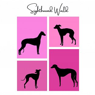 Sighthound World - pink